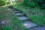 DSC 2902 Garden Steps