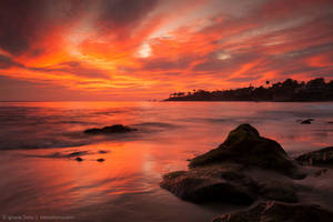 A Fleeting Moment by isotophoto