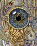 Bio-mechanical eye III
