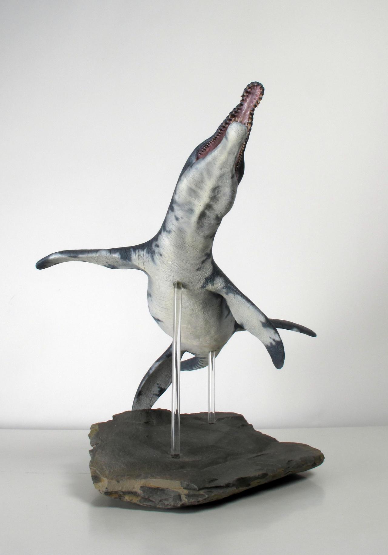 Pliosaurus macromerus 4 by Thomasotom
