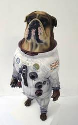 Space-Dog by Thomasotom