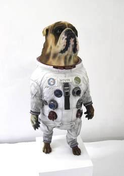 Space-Dog