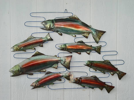 School of Trout