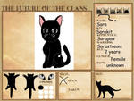 The Future Of The Clans Reference Sheet Sara