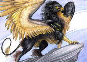 May The Gryphon Be With You by rage1986