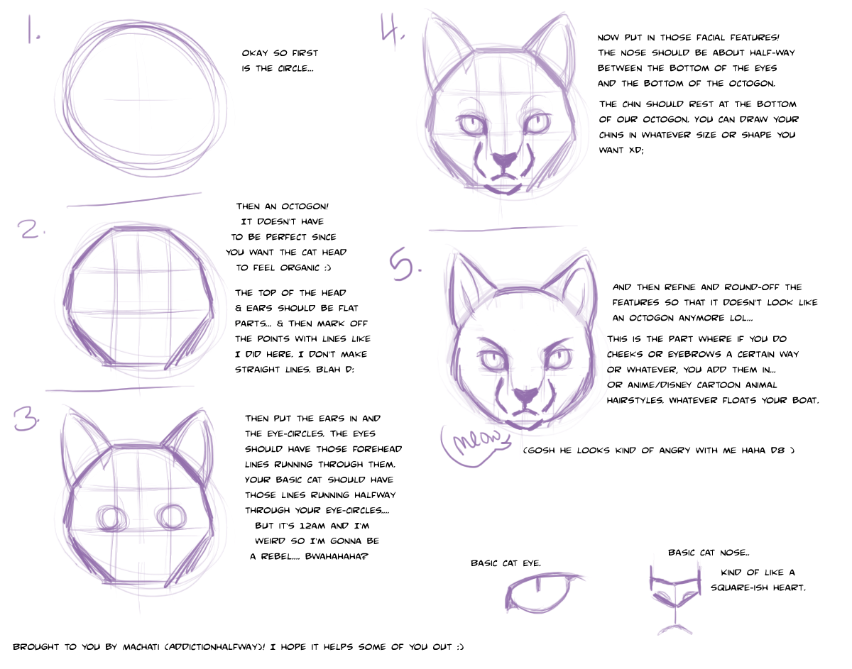 Cat Face Drawing Tutorial Bitcoin User Base Growth