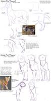 Quick Cat Anatomy Tutorial by AddictionHalfWay