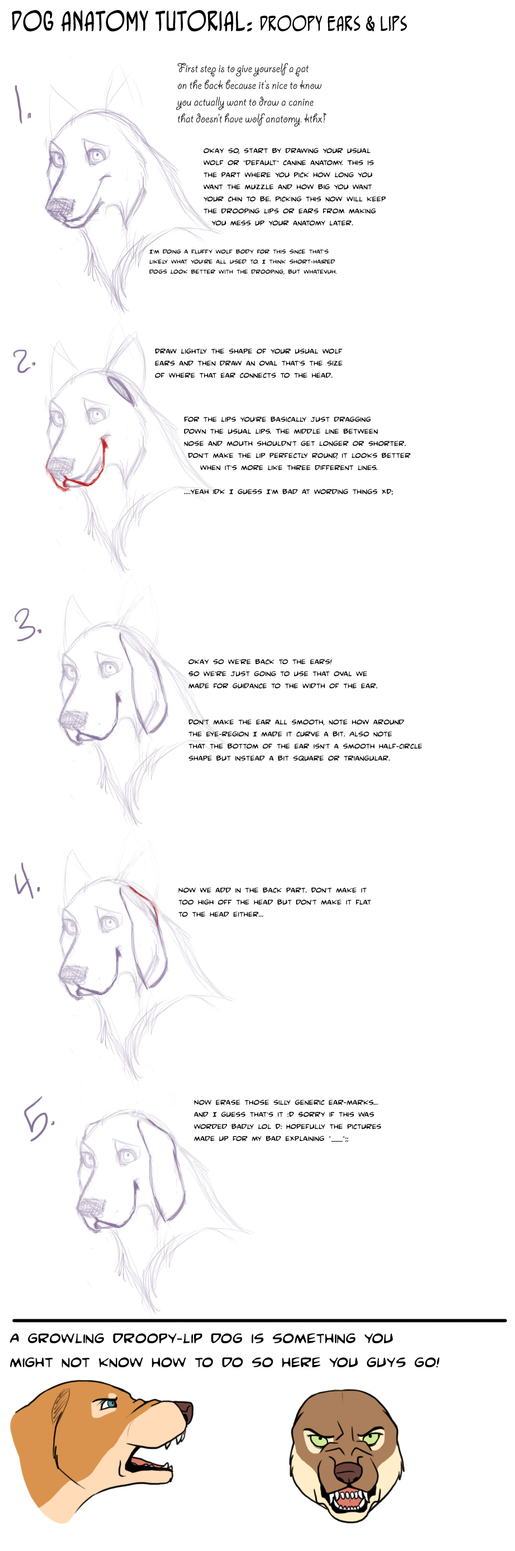 Dog Tut: Droopy lips and ears by AddictionHalfWay on DeviantArt