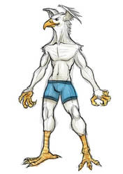 Birdman Concept by AustinAlander