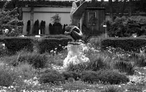 broken angel by Mir129996