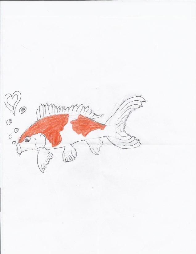 Valentine gift koi fish by weregaruru on deviantart for Koi fish gifts