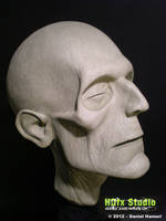 Lifesize mummy head (2012)