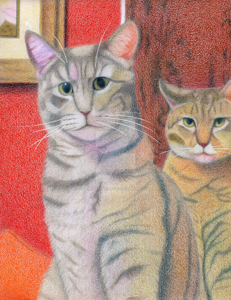 Cats Portrait by taisenkatakura321