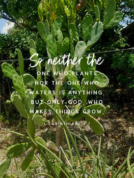 Sowing is ours. Growing is God's.