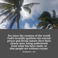 Wisdom in the Earth