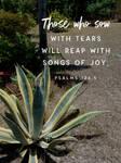 Tears Water Joy by DiscipleDJ