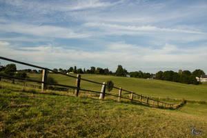 Sunny Fields by Xhario