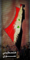 I'm a Palestinian Syrian