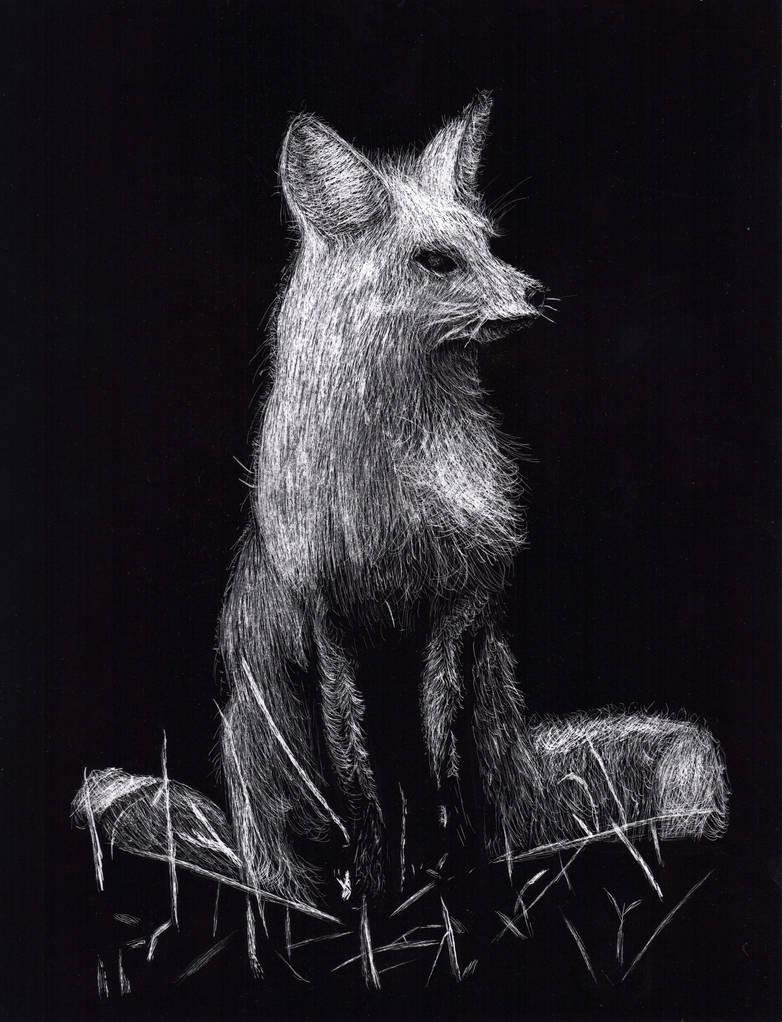 Scratch-board Fox by Ryakr