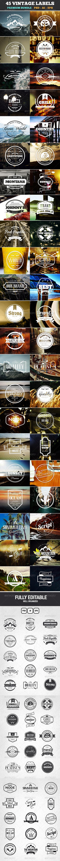 45 Vintage Labels,  Badges Logos Bundle by themagpac