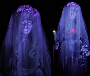 Haunted Mansion bride in Tokyo Disneyland by hentaib2319