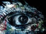 Blue Eye -Ruins-