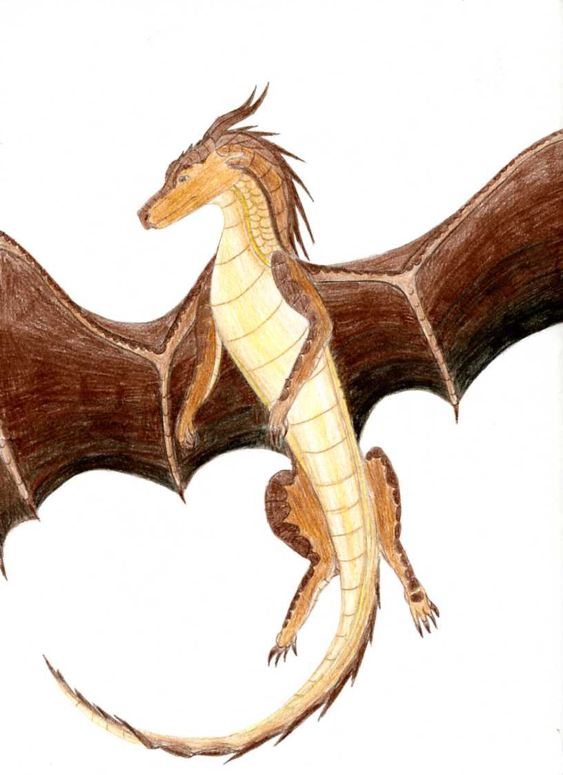 Copper the MudWing SkyWing Hybrid by Icyzwolf on DeviantArt