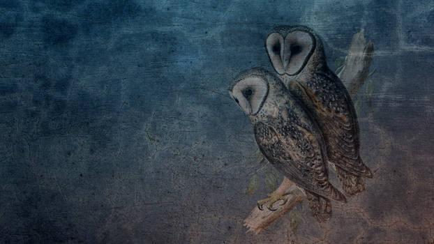 Vintage Owl Background 01