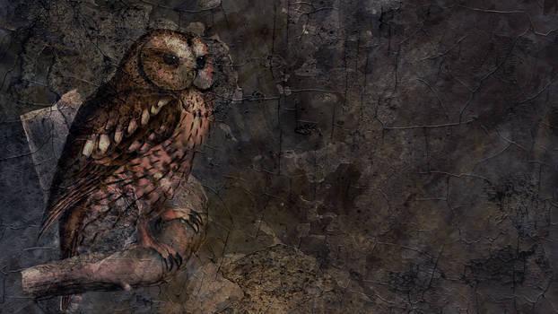 Vintage Owl Background 03