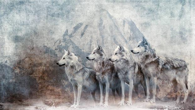 Vintage Snow Wolves