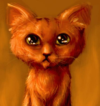 Kittin. by Virtuxa