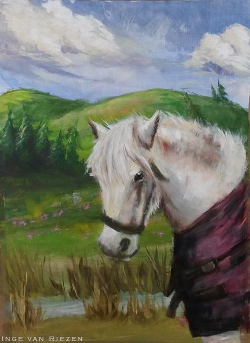 A white fluffy pony by Virtuxa