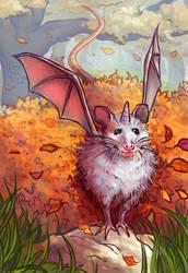 Autumn possum!