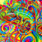 Psychedelizard Psychedelic Chameleon