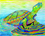 Psychedelic Rainbow Neon Painted Turtle