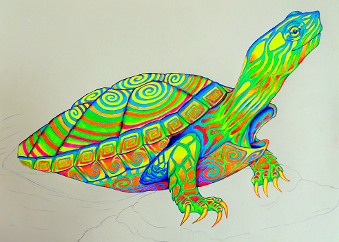 painted turtle coloring page - painted turtle works in progress by psychedeliczen on