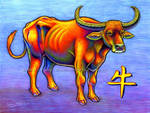 Chinese Zodiac - Year of the Ox