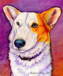 Colorful Pet Portrait - Shiver