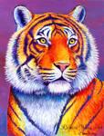 Fiery Beauty - Bengal Tiger