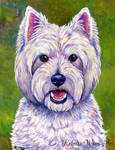 Happiness - West Highland White Terrier
