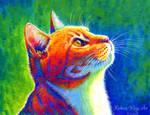 Anticipation - Rainbow Tabby Cat