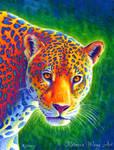Light in the Rainforest - Colorful Jaguar