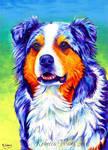 Colorful Pet Portrait - Jerry