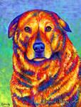 Colorful Pet Portrait - Grizzly