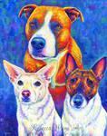 Colorful pet Portrait - Tuco, Malibu, Milo