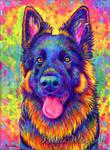 Colorful Pet Portrait - Kozmo