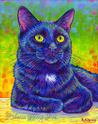 Colorful Pet Portrait - Alfred