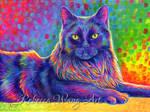 Colorful Pet Portrait - Felix