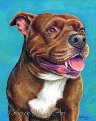 Pet Portrait - Tallulah