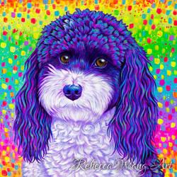 Colorful Poodle Portrait - Kujo